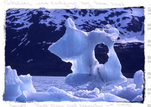 CIRCLES - Portage, Alaska