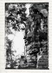 SERENITY - Angkor Wat, Cambodia